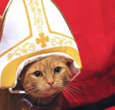 Papal Cat